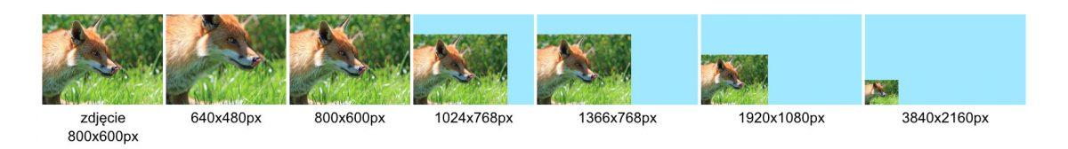 Porównanie wielkości tego samego obrazka na monitorach o tej samej wysokości, ale różnych rozdzielczościach.